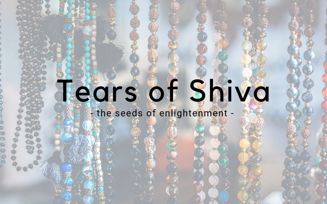 The Tears of Shiva – Rudraksha Meditation Beads